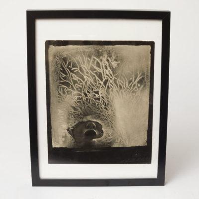 Galerie Insighter Paris by Vanessa Metayer presents Jan Lukas
